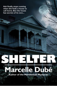 Shelter by Marcelle Dubé